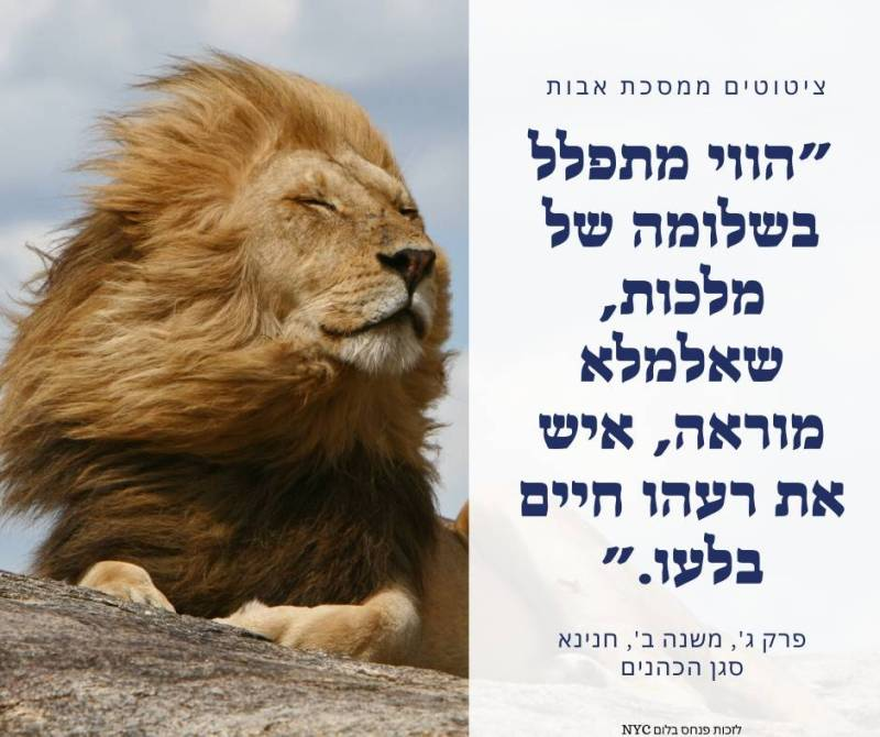 ציטוט מחזק ממסכת אבות הווי מתפלל בשלומה של מלכות