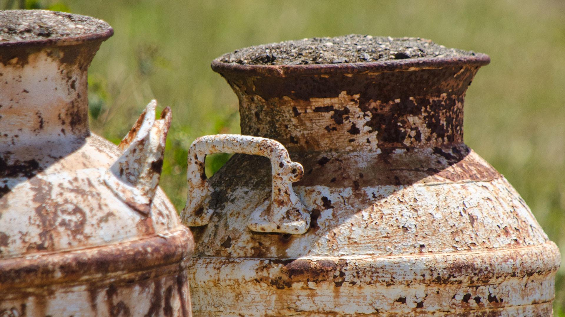 rusty jugs at H. Eberhard Nurseries