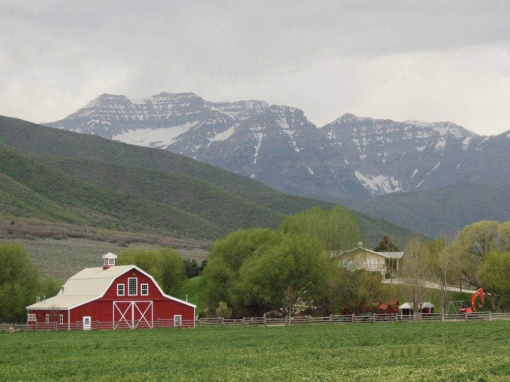 Wallsburg field