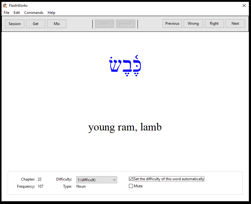 hebrew vocabulary computer flashcard screen