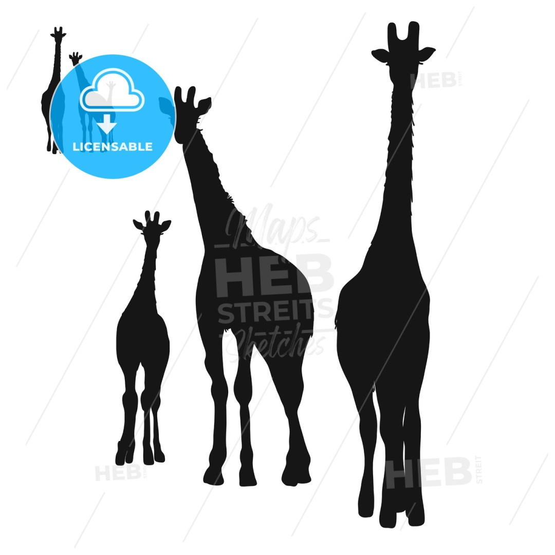 Three Giraffes Silhouettes