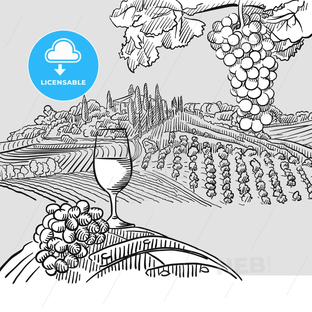 Wine barrel grapes and landscape Illustration