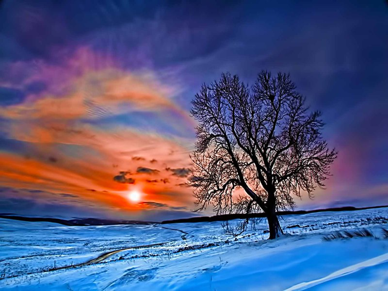 4k Fall Painting Wallpapers Winter Sunrise Hecatedemeter
