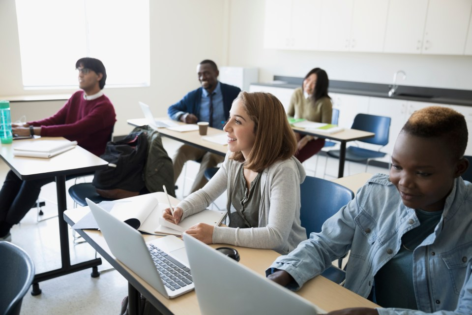 online program managers colleges