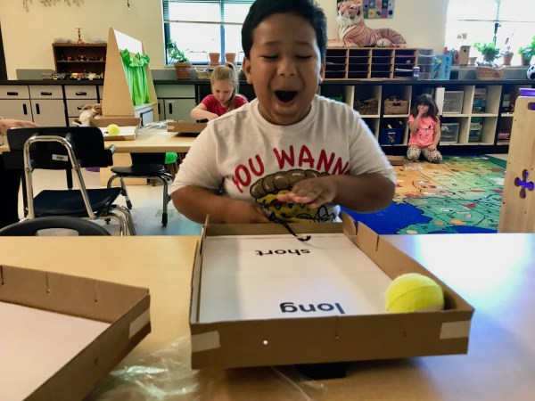 Standards Improve Elementary Science Education