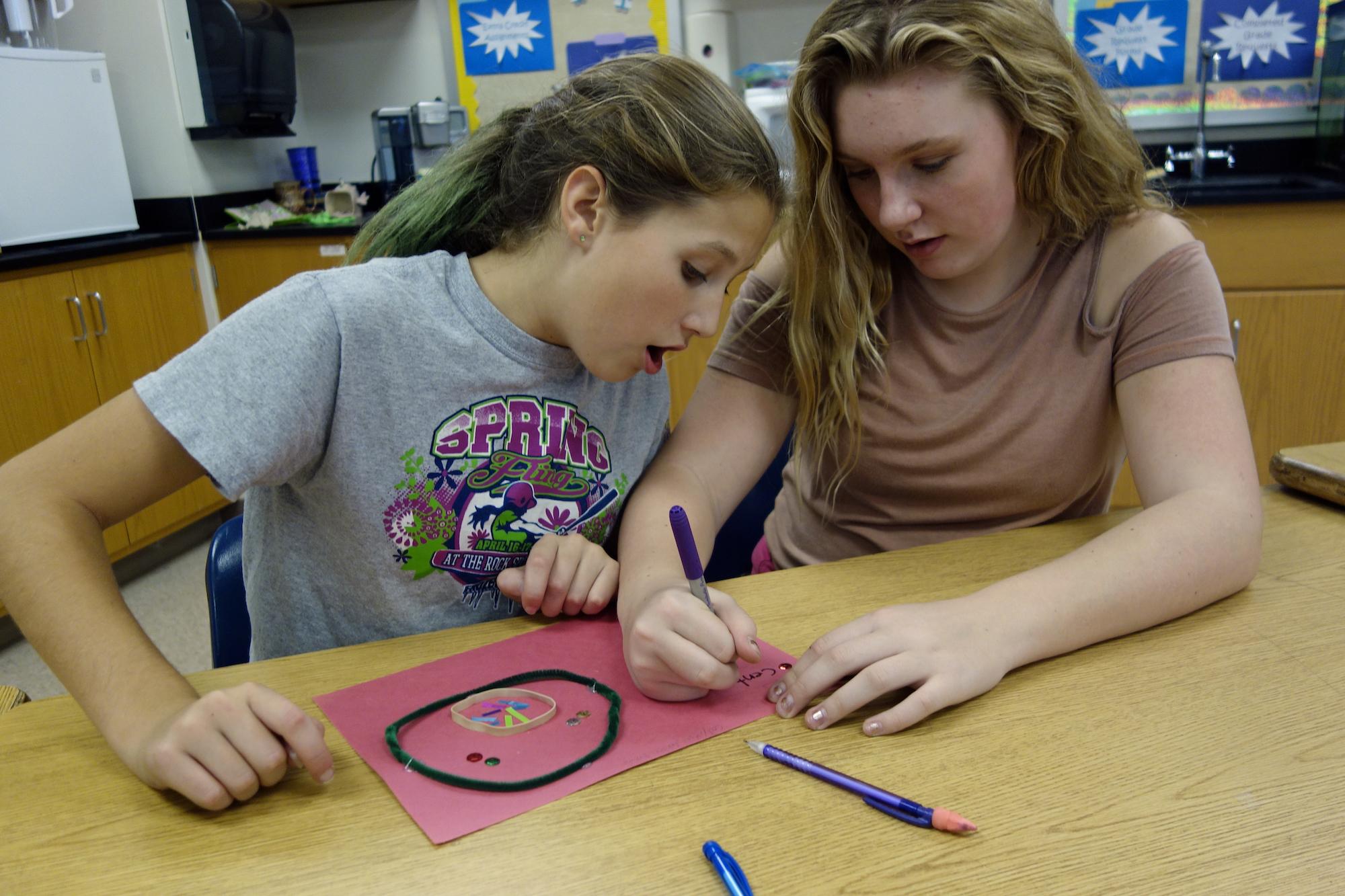 Teaching The Scientific Method In Middle School Science