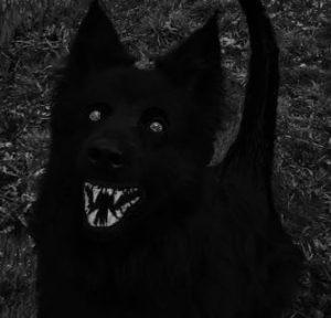 Possesso demoniaco