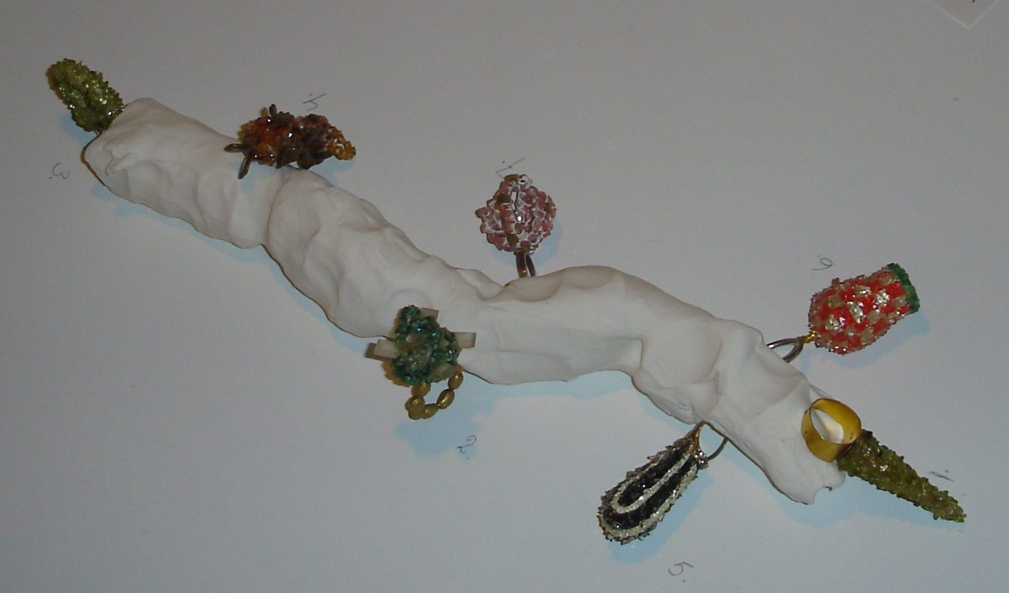 Metrosideros Robusta - sieraden Karl Fritsch, Stedelijk Museum 's-Hertogenbosch