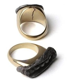 Christopher Thompson Royds, Seal Rings : 16g & 12g, ringen,2010, goud, lood