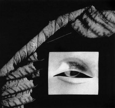 Bruno Martinazzi, broche, 1968. Foto met dank aan Die Neue Sammlung, Adolf Vrhel©