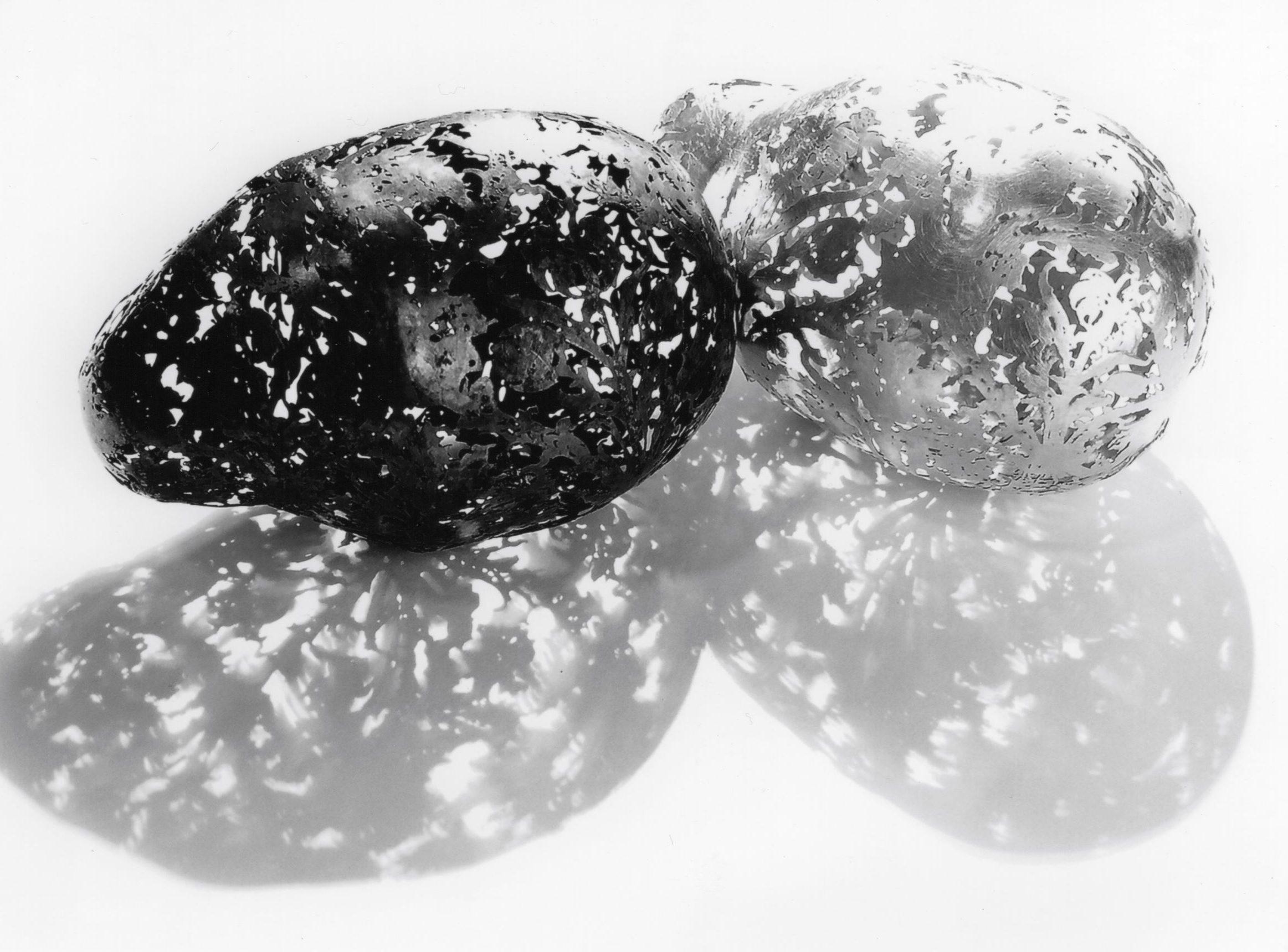 Carla Nuis, Potatoes, 2005, geëtst zilver