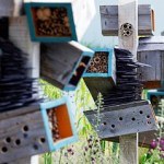 Obsessed With Insect Hotels!