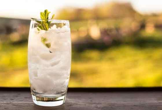 Elderflower & Vodka Cocktail Slush. A Tribute to Isabella King.