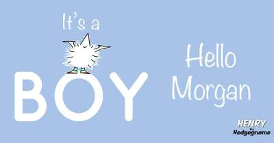 Children's books | Henry the Hedgegnome | Happy birth day Morgan