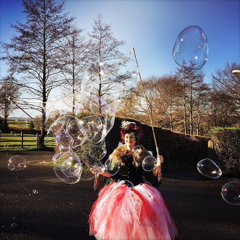Children's books | Henry the Hedgegnome | A fairy blowing massive bubbles