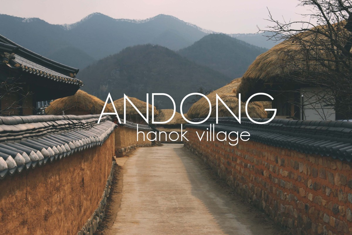 ANDONG COVER