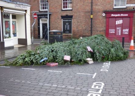 Christmas Tree fallen over 2