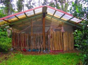 Guava Hut back entrance