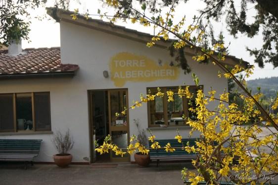 Chianti-Truffle-Tour-110
