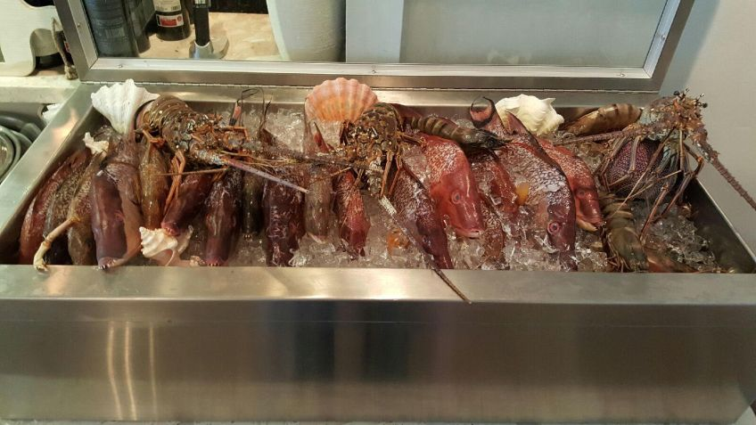 Fresh fish display at MesaMar