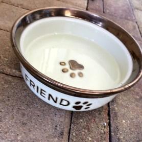 South Pointe Tavern dog bowl
