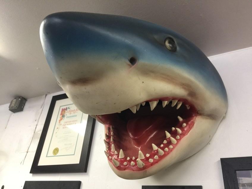 Captain Kidd's Sharkhead