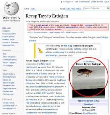 To je turški predsednik Recep Tayyip Erdoğan.