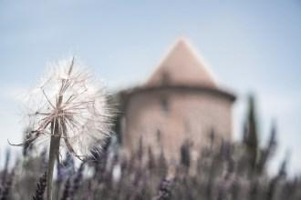 © Monika Seyffer, Foto Workshop Provence