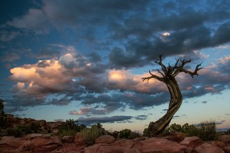 © Tina Rödig, Foto Reise Indianer Canyon