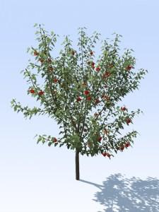 maketree