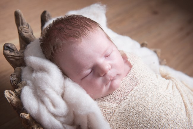 lottie newborn 6