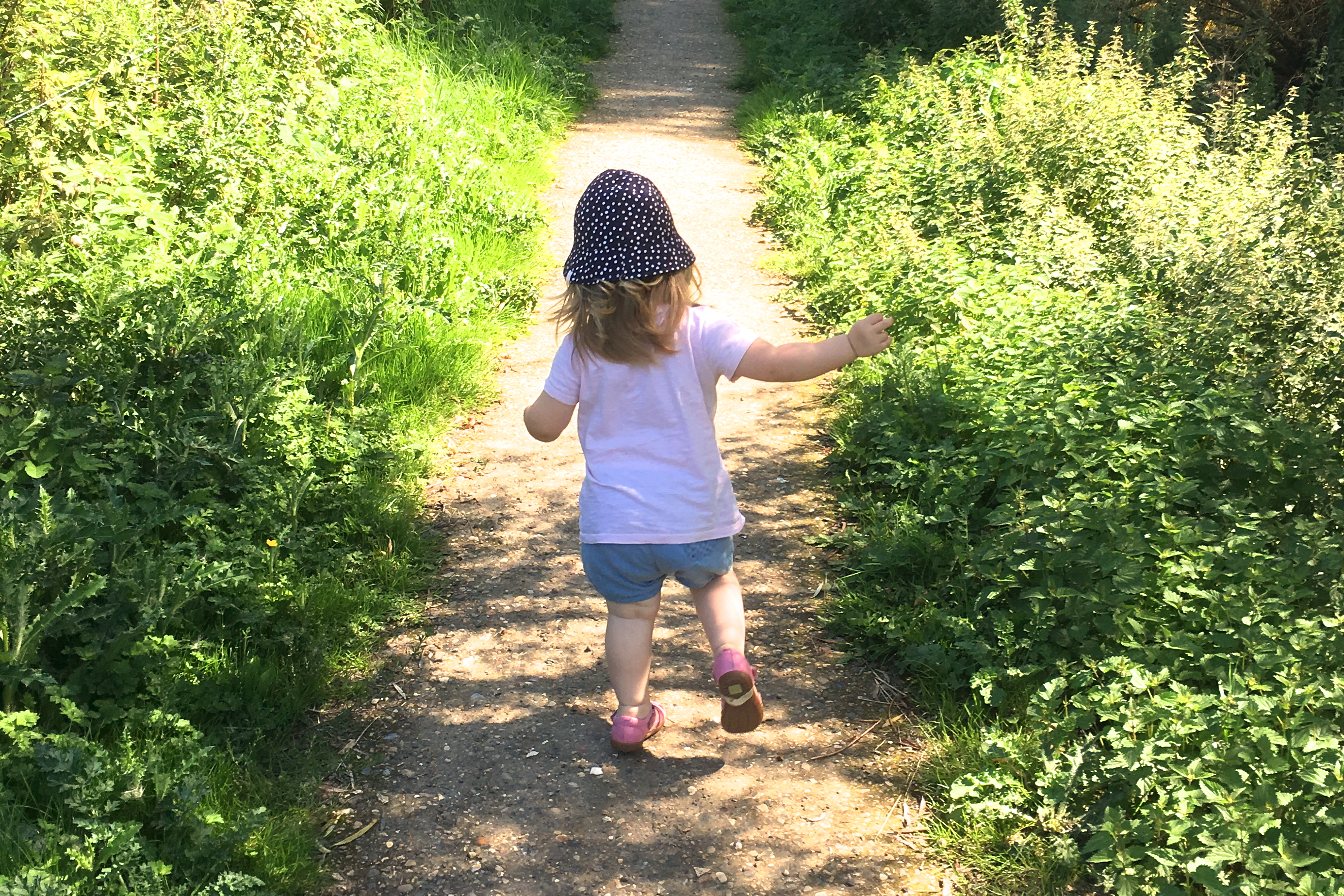 Toddler girl running down country path away from the camera