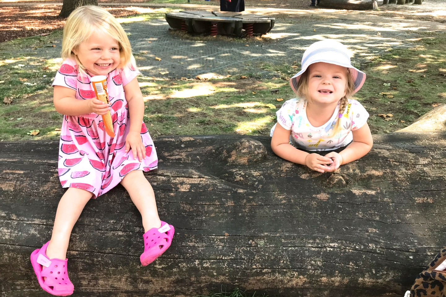 two young sisters, one sitting on a log, one standing behind, leaning on it.
