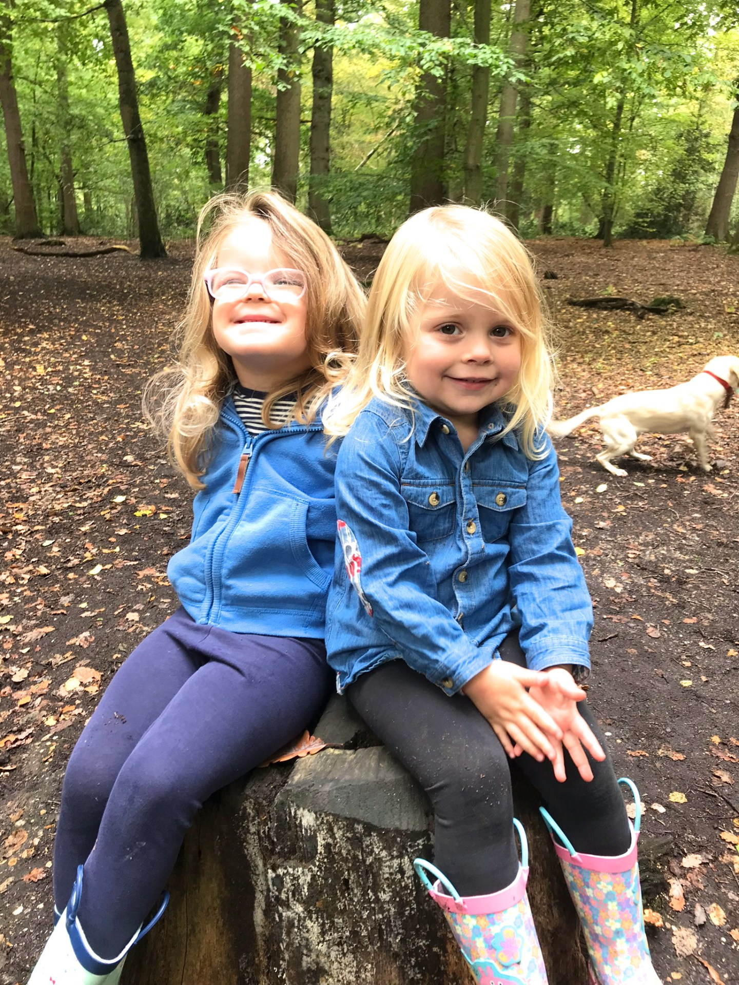 two sisters sitting side by side on a tree stump in a wood