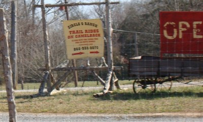 Circle G Ranch sign