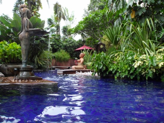 Sheraton Grande Sukhumvit  Grande pool