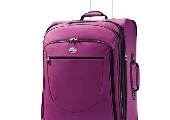 American Tourister Luggage Splash 25 Upright Suitcase solar rose
