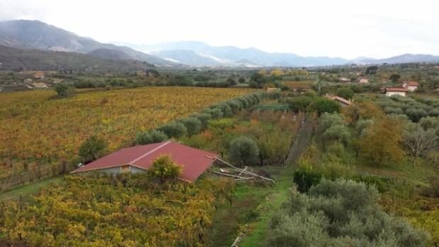 Sicily Wine Tour Fuedo Vagliasindi view