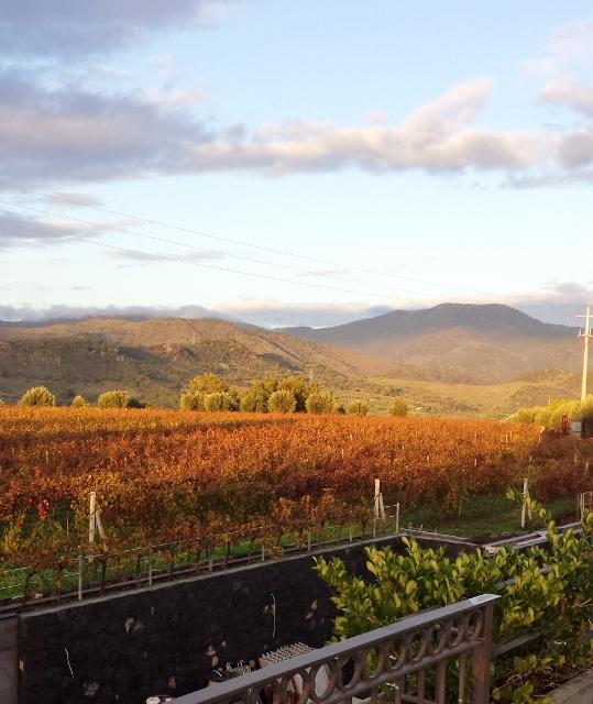 Sicily Wine Tour Tornatore view