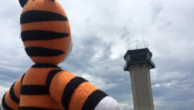 tampa bay airport lost stuffed animal