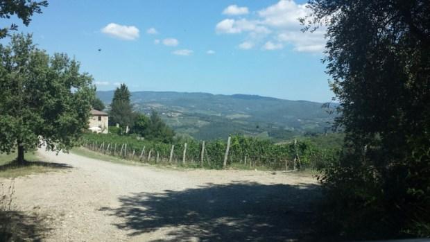 Road to Casanuovo di Nittardi