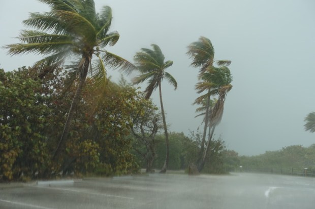 bahia honda state park downpour
