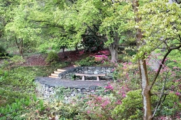 National Arboretum DC asian woodlands seating
