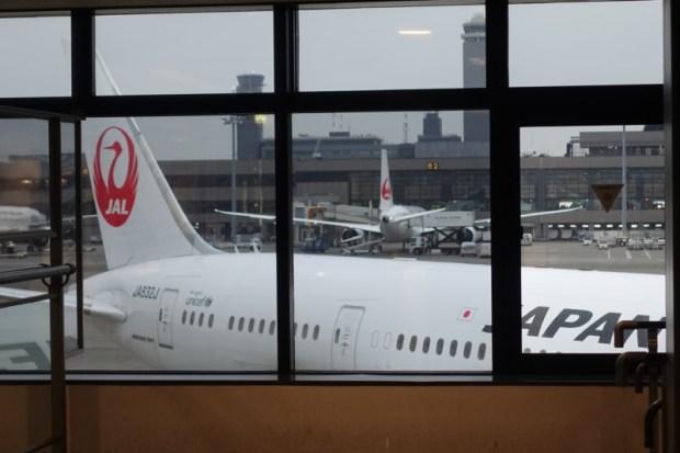 JAL economy 787 NRT BKK plane