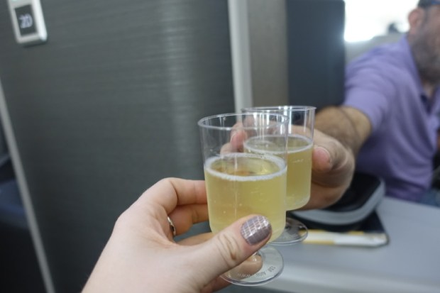 american airlines business class 787 ord-nrt toast