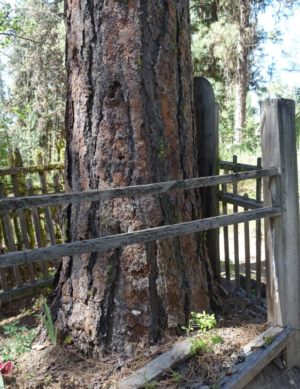 Idaho City Pioneer Cemetery Boot Hill graves