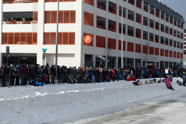 2016 Iditarod Race downtown anchorage course