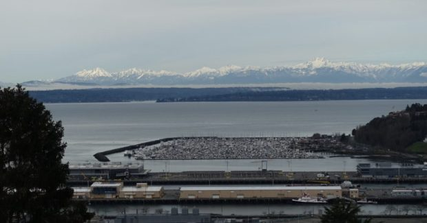 Betty Bowen Viewpoint Seattle Marina