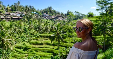Rice terraces, Ubud