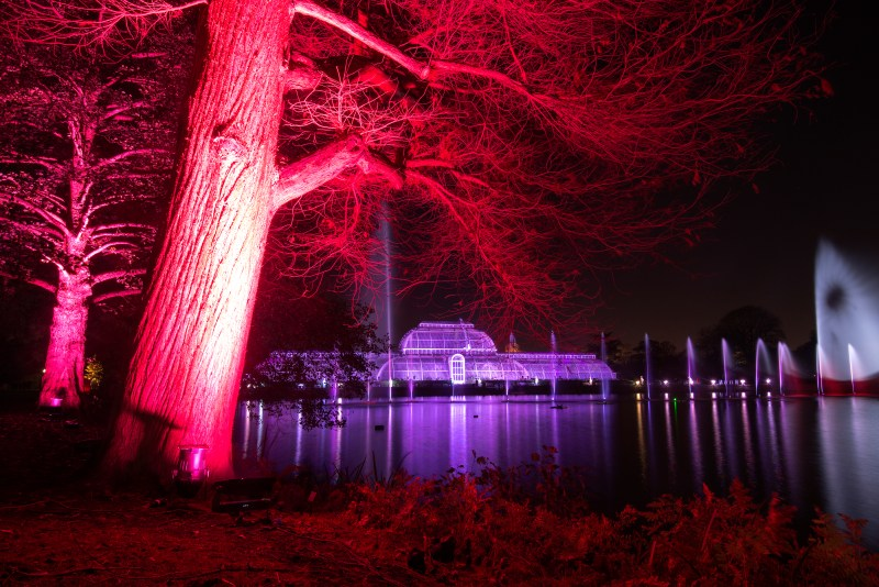 Christmas at Kew by Jeff Eden, RBG Kew.